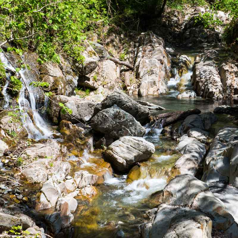 Pardines, Vall de Ribes